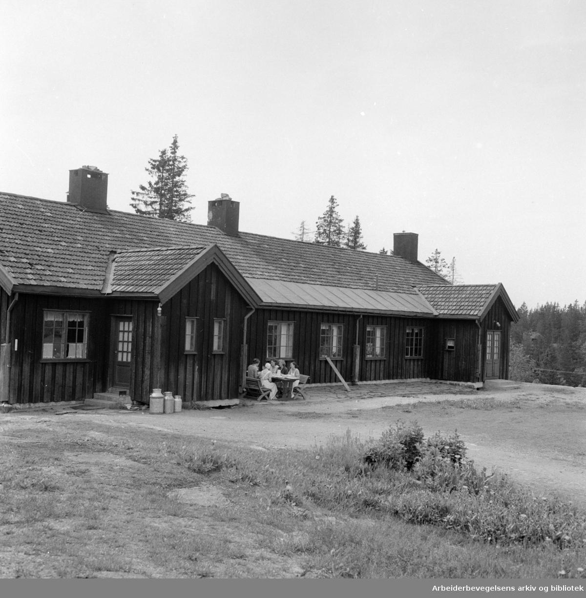 Øvreseter feriehjem for barn. Juli 1956