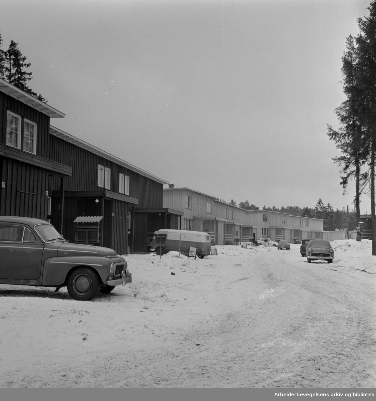 Oppsal. Bjartkollen borettslag. Februar 1964.