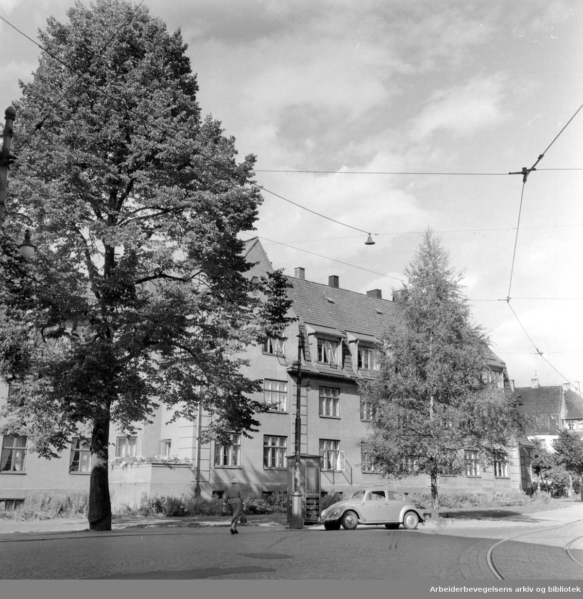 Lindern kompleksene. August 1959