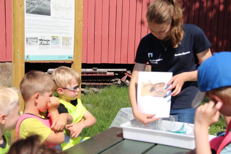 Foto av naturveileder som viser barn et bilde av insekt (Foto/Photo)