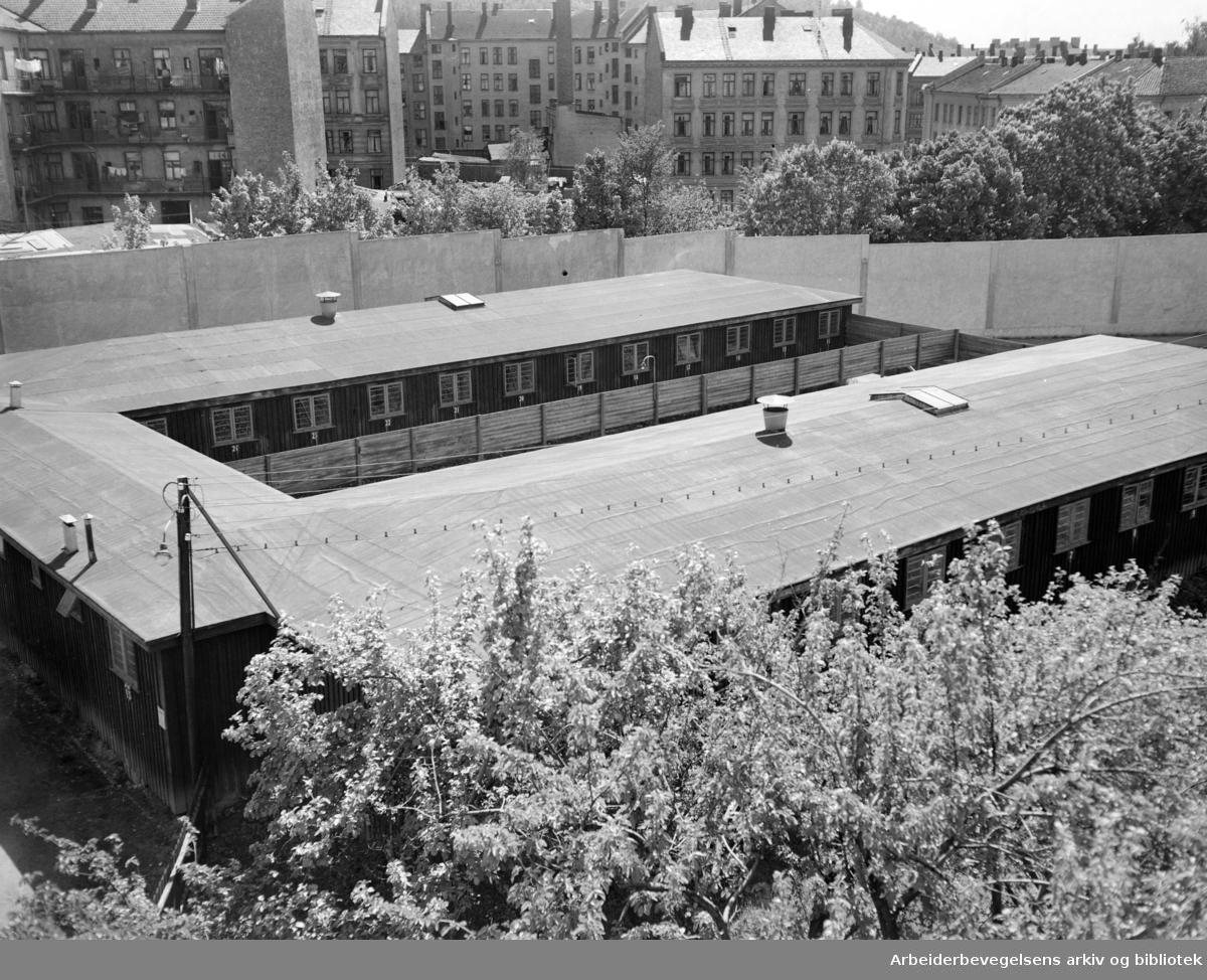 Kretsfengselets sykehus. Mai 1950