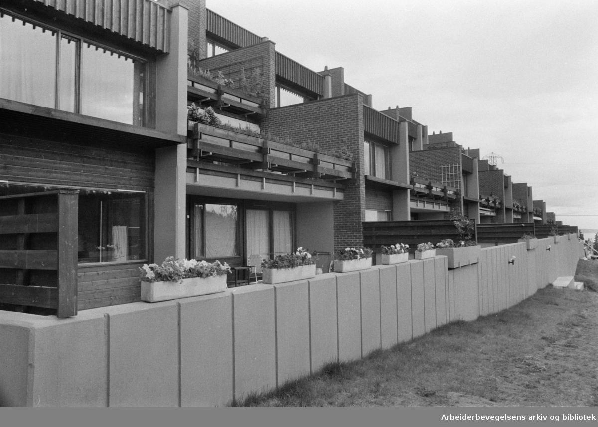 Huseby: Torjusbakken 19. Eksteriør. Juni 1974