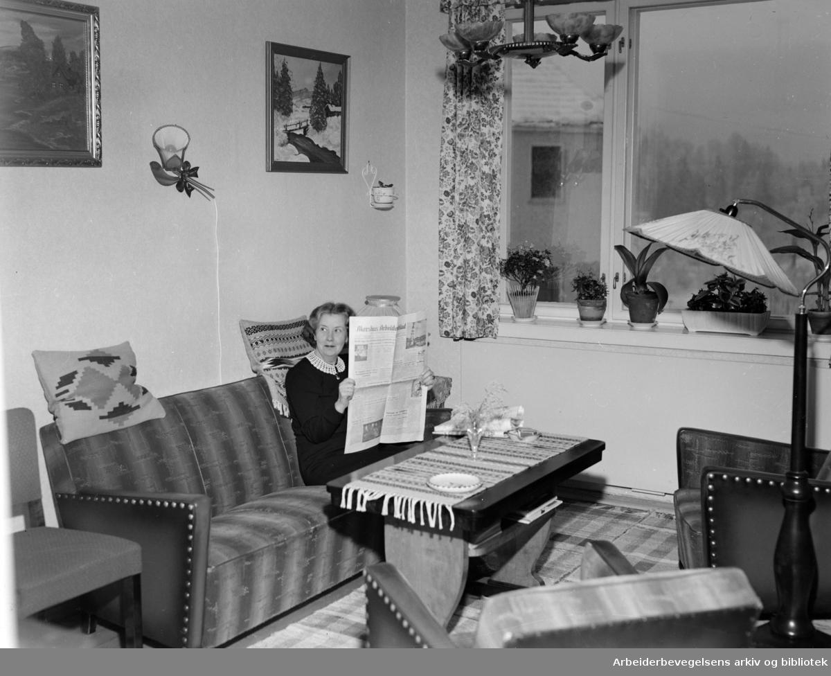 Grorud: Vestbysletta, Svenskehusfeltet.Februar 1954