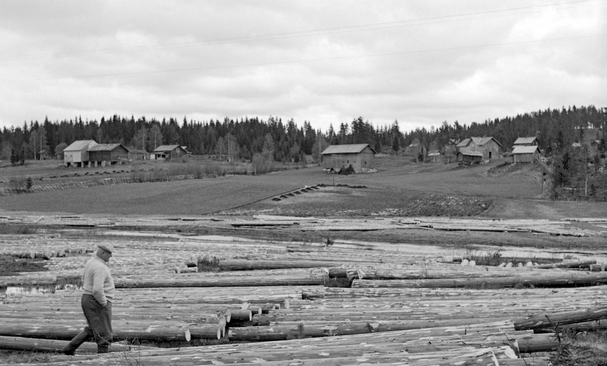 Barket tømmer, lagt i såkalte «flakvelter» på myrer langs den nedre delen av Løvsetåa i Nord-Odal kommune i Hedmark.  Flakveltene besto av et par underlagsstokker (strøstokker) på bakken med ei flo (ett lag) av tømmerstokker vinkelrett oppå.  Denne tilleggingsmåten gjorde tømmeret lett tilgjengelig for måling og merking, og den gav god tørk, noe som reduserte faren for at stokkene skulle synke i løpet av påfølgende fløtingssesong.  En slik tilleggingsmåte var imidlertid plasskrevende, så den ble vanligvis bare brukt på myrflater og ved tillegging på is. Da dette fotografiet ble tatt gikk det en mann mellom flakveltene.  På en bakkekam i bakgrunnen lå det flere småbruk.  Fotografiet er tatt i 1954.    Løvsetåa, eller Bjørnstadelva, som den også har vært kalt, kommer fra Ottsjøen og Vesle Otten, to små sjøer i grensetraktene mellom Nord-Odal, Eidsvoll og Stange.  Derfra renner den sørøstover, først gjennom skog- og sætertrakter, ned mot bygda ved Verket.  Der passerer åa etter hvert gardene Løset og Bjørnstad, som har gitt vassdraget navn.  Nedenfor Løkker bru og Brattfossen, forenes Løvsetåa med Mørkåa og blir til Kilåa, som etter noen få hundrede meter renner ut i innsjøen Råsen.  Løvsetåa er tolv kilometer lang, hvorav de nederste åtte fra gammelt av hadde tømmerfløting.  Det fantes fire fløtingsdammer i dette elveløpet, samt to kverndammer, som tidvis også ble brukt til å regulere vannføringa etter fløtingas behov.  Ved hjelp av vann fra disse dammene greide fløterne som regel å få fløtet nesten alt innmeldt fløtingsvirke ned til Råsen i løpet av noen hektiske vårdager.   I 1954, det året dette fotografiet ble tatt, var det innmeldt 60 809 tømmerstokker til fløting i Løvsetåa.