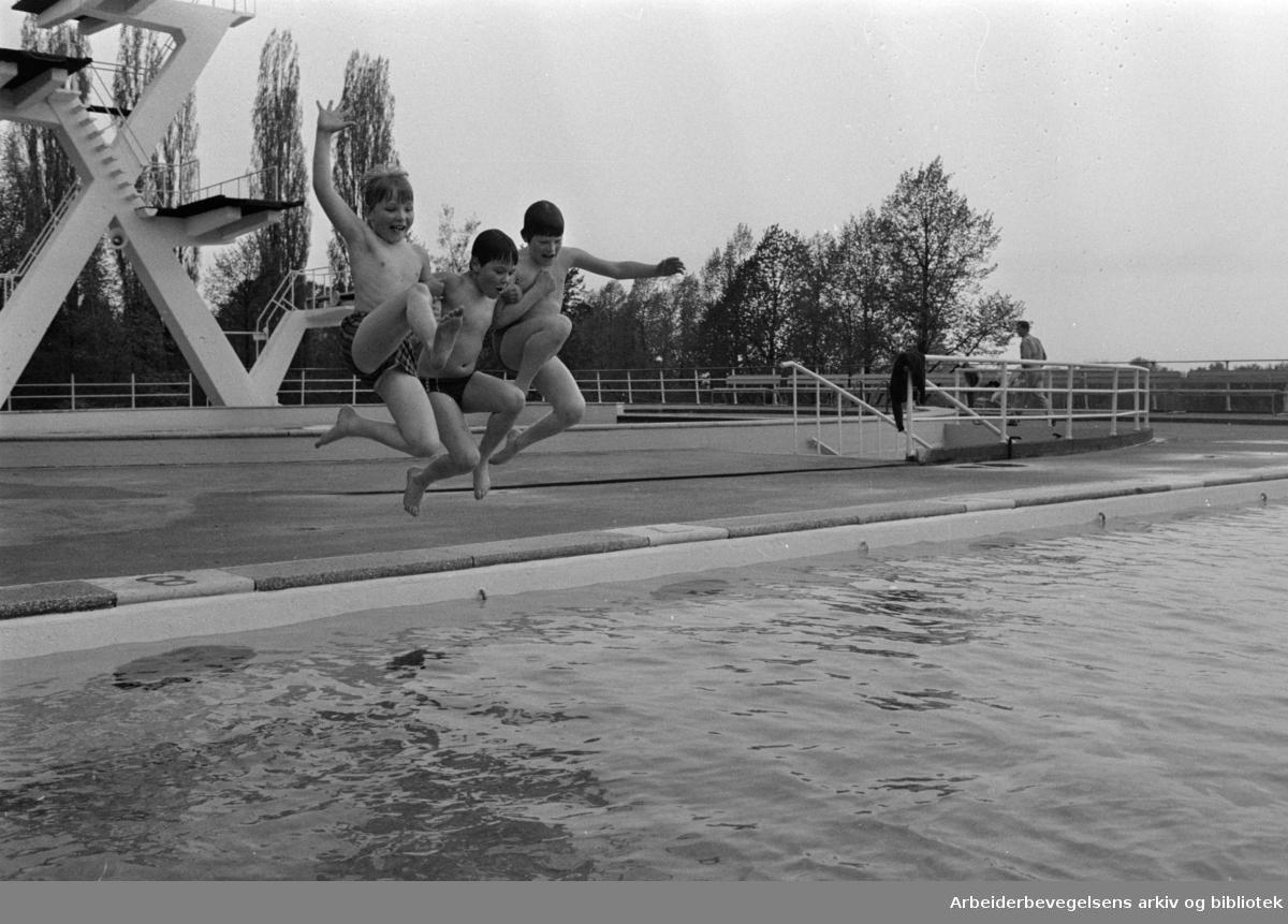 Frognerbadet. Badegjestene kom med sola. Fra v.: Erling Bøe, Aslak Helgheim og Arne Trygve Mossin. Mai 1971