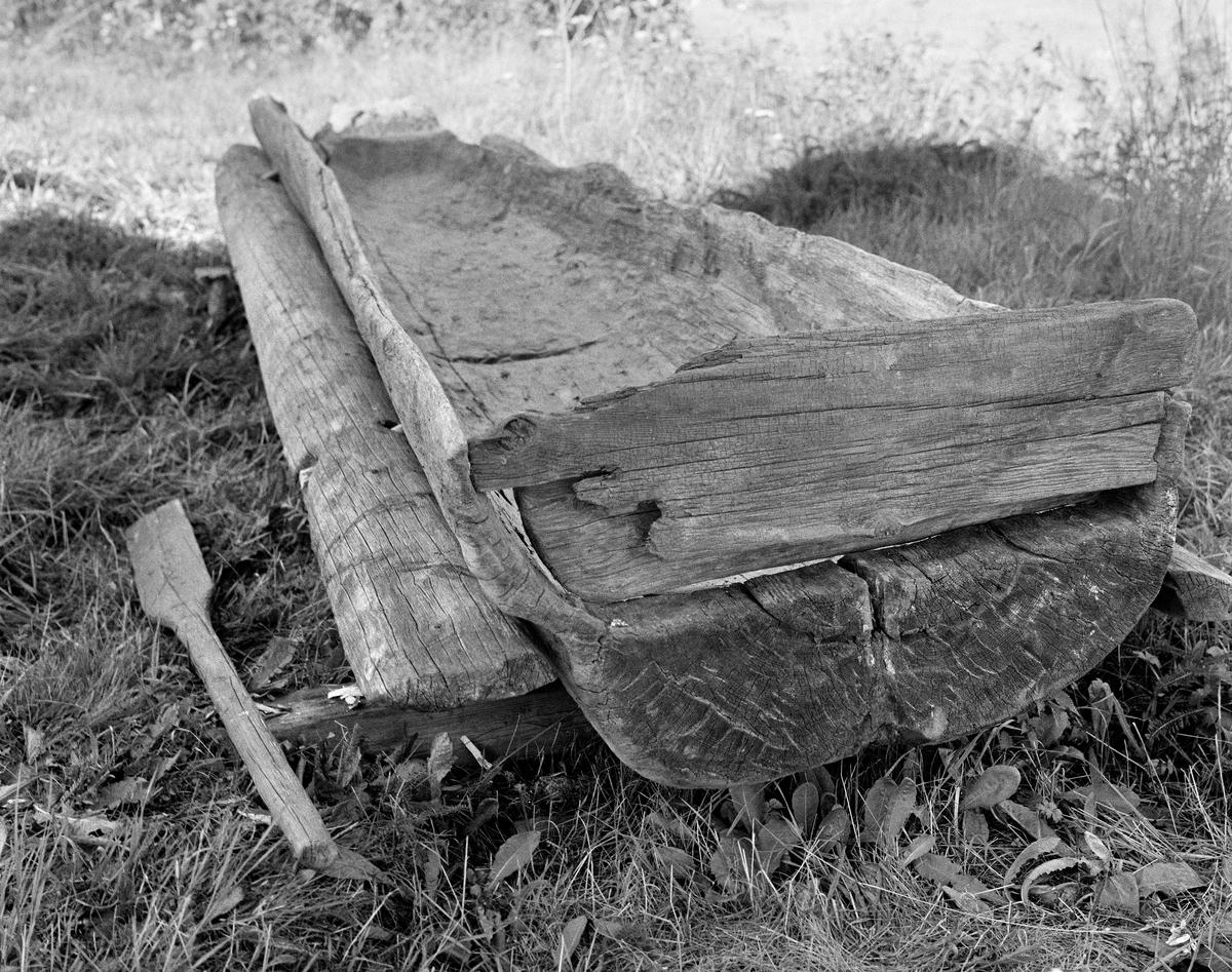 """I 1969 fant Knut Enger fra Galterud denne stokkebåten i Lomvika i sjøen Høljeren i Sør-Odal kommune i Hedmark.  Oppdagelsen ble gjort på et tidspunkt da vannstanden i sjøen var uvanlig lav.  Konservator Tore Fossum fra Norsk Skogbruksmuseum ble tilkalt, og han tok dette fotografiet etter at båten var tatt opp på land og midlertidig plassert på kabber på grasbakken.  Her ser vi båten fotografert fra akterenden, der vi ser at det var felt inn ei fjøl, antakelig fordi kjernene i stokken båten var lagd av var hul og råtten.  Minst like interessante er """"stabilisatorbordene"""", halvkløvninger som er tappet inn i begge båtsidene ved hjelp av trenagler.  Vi ser også ei åre som ble funnet sammen med båten.  Skroget var drøyt 3,4 meter langt, 72 centimeter bredt i akterenden og 45 centimeter bredt i stavnen.  Også utriggerne var drøyt 3 meter lange og om lag 20 centimeter brede.  Årelengden ble målt til 152 centimeter.  Da funnet ble gjort var båten nedrøyset med stein.  Dette var antakelig gjort for å forebygge oppsprekking mens båten lå i vinteropplag.  Etter at båten var funnet og tatt opp på land ble den fraktet til Norsk Skogbruksmuseum (fra 2003 Norsk Skogmuseum) og innlemmet i samlingene der - jfr. SJF.02096."""