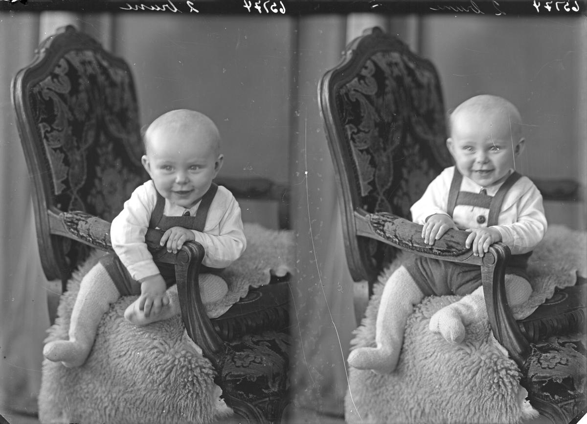 Portrett. Liten gutt. Bestilt av Berent Tørresdahl. Sagi. Skjold.