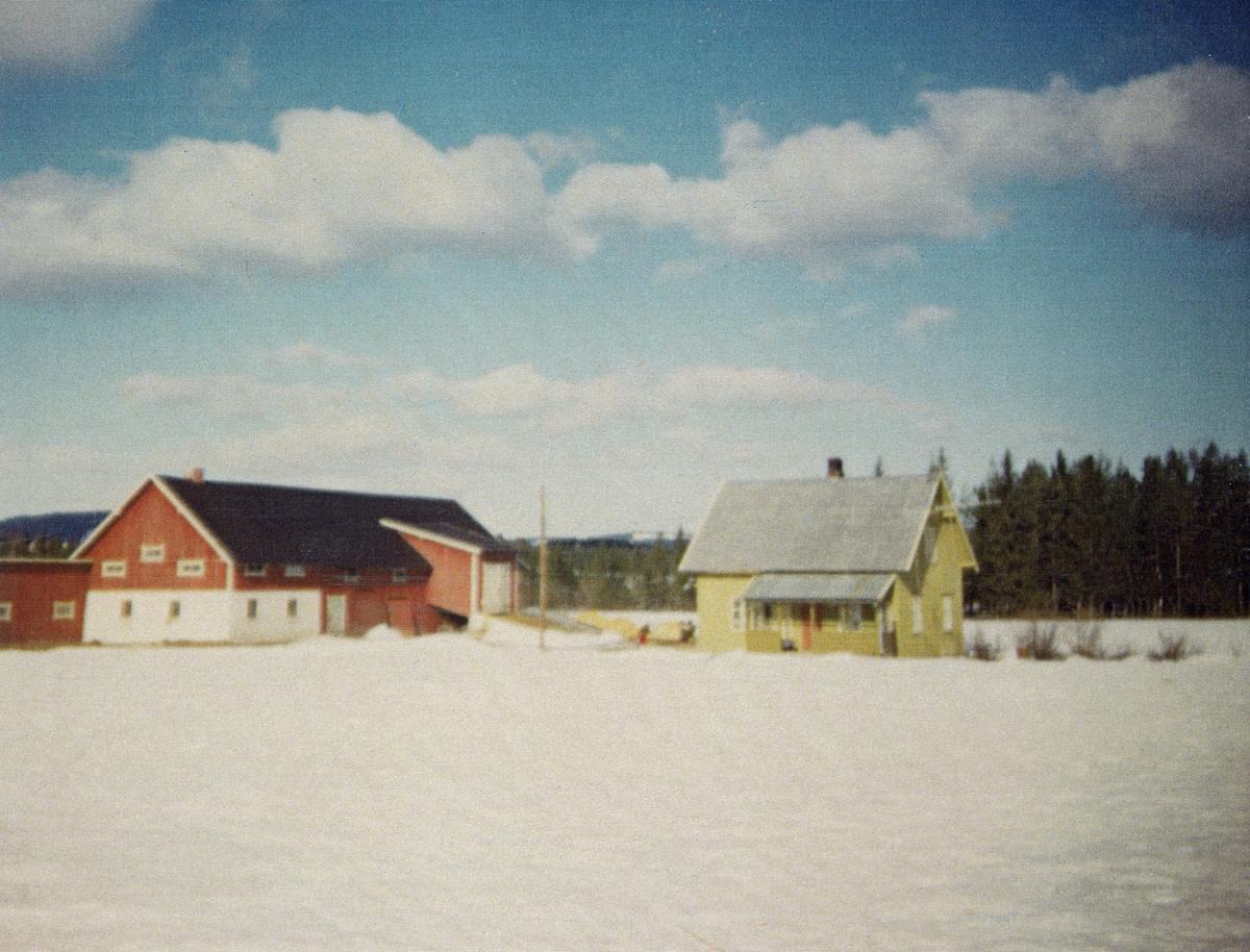 Gardsbruket Myreng i Våler i Solør, Hedmark.  Dette er et vinteropptak, tatt over et snødekt jorde, som omgav et tun med et gulmalt, halvannenetasjes våningshus og en rødmalt driftsbygning, i hovedsak utført i bordkledd bindingsverk.  En del av underetasjen som antakelig rommet et fjøs er kviltmalt.  I gardstunet var det ei innkledd kjørebru opp til høytrevet i den øvre delen av driftsbygningen.  Våningshuset hadde en uinnkledd veranda på den langsida som vente mot fotografen.  Begge de to nevnte bygningene hadde saltak.  Ved venstre bildekant ser vi et mindre uthus, antakelig et vedskjul, muligens med utedo, so hadde pulttak.  Også denne bygningen var rødmalt utvendig.  Myreng var et nybrottsbruk som ble ryddet på et skogareal som hadde tilhørt garden Lundeby (cirka 1 kilometer lengre nord) i 1930-åra av Ole (1899-1977) og Ragnhild Kristmoen (1905-1992).  Jordvegen var på 40-45 dekar, og den ble ryddet for stein og røtter ved hjelp av stubbebryter.  Våningshuset sto nettopp ferdig da eldstesønnen Joar ble født i 1935.  Ole og Ragnhild fikk ti barn, hvorav to døde tidlig, mens de øvrige åtte vokste opp på dette bruket.  Husene på fotografiet ble revet, anatkelig i 1980-åra, og erstattet av mer moderne bebyggelse.
