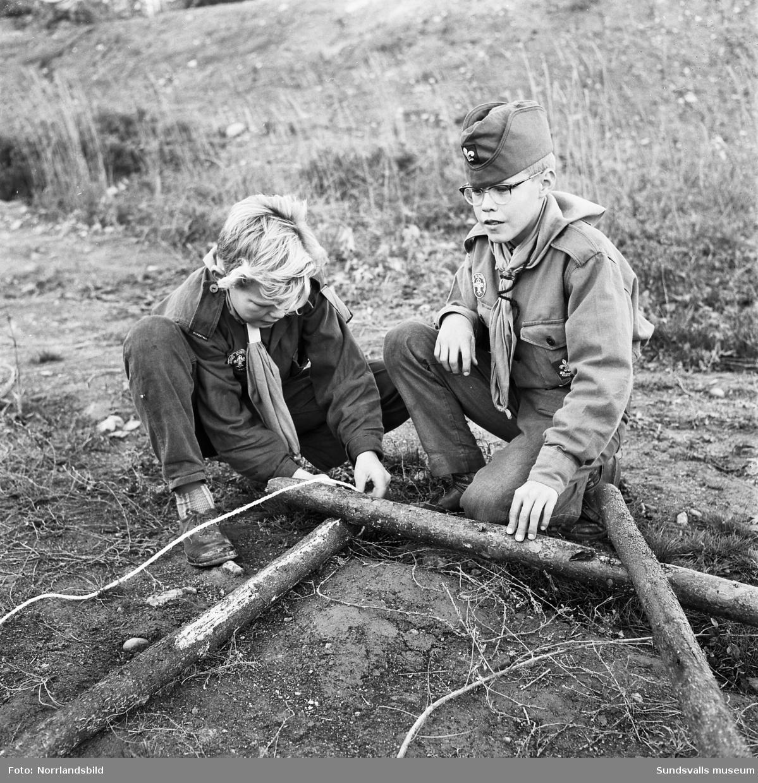 Scouternas rikstävling 1961. Två pojkscouter bygger med stockar och rep.
