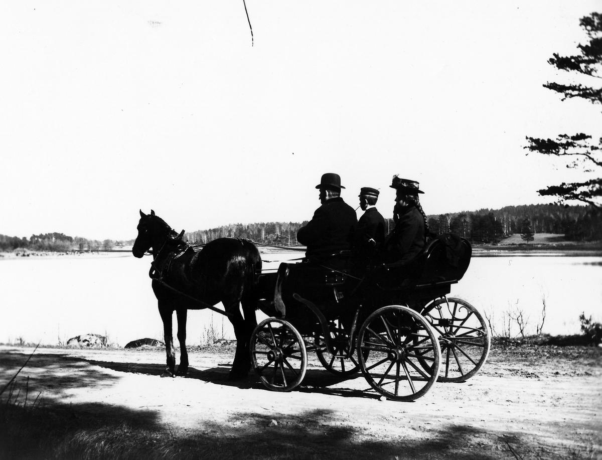 Två män och en kvinna i sitter i en hästvagn bredvid en sjö.