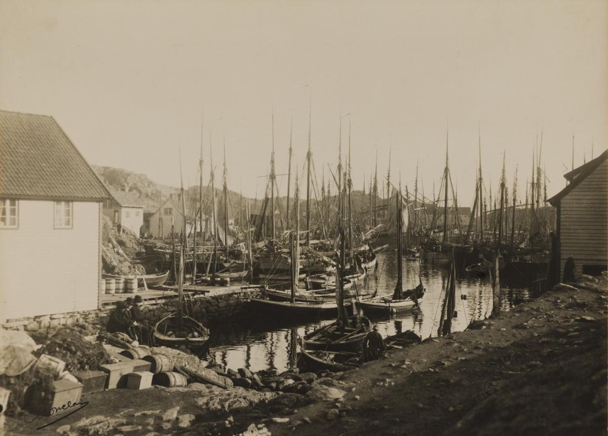 Omegnen III - Bekkervik med sildeflåten.