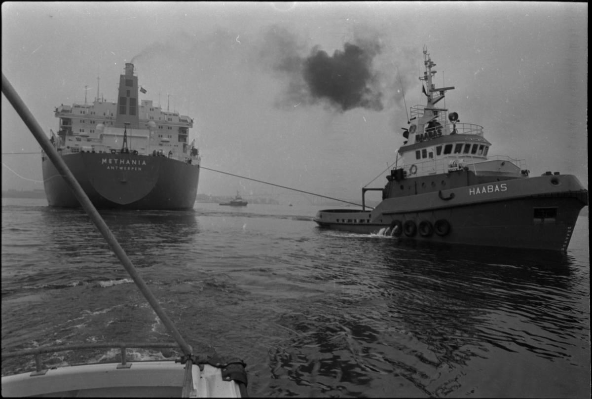 "Taubåten M/S ""Haabas"", hjelper skipet M/S ""Methania"" fra Antwerpen."