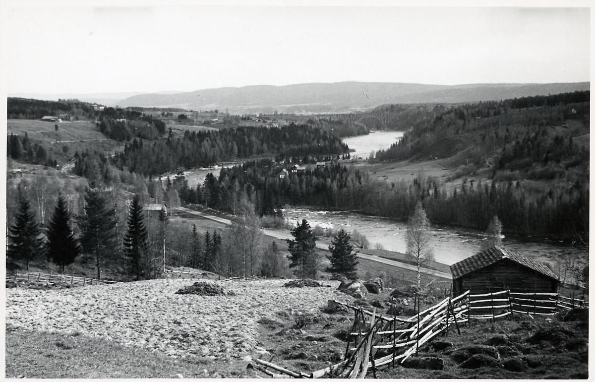 Vy över Ångermanälven och järnvägsbron över densamma vid Forsmo.
