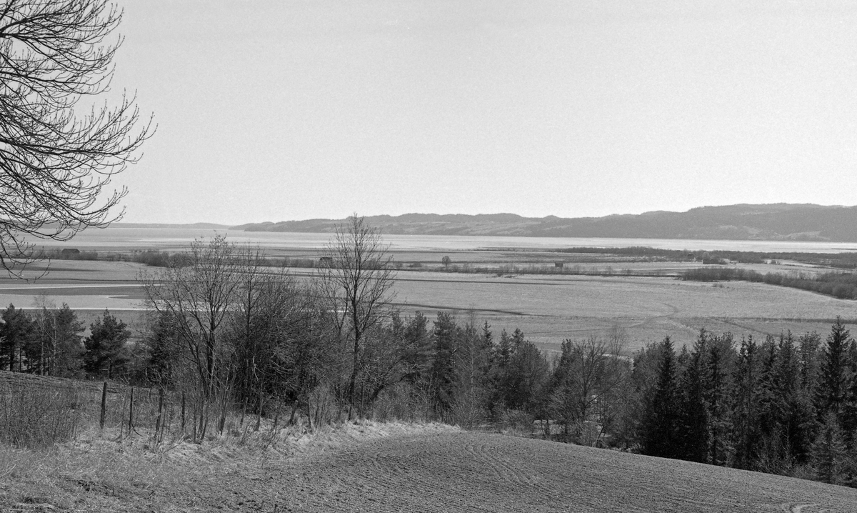 Utsikt over den nordre delen av Øyeren i Glommavassdraget, sett fra et vollareal på østsida av innsjøen.  Øyeren er Norges niende største innsjø med et vannspeil på om lag 80 kvadratkilometer.  Innsjøen ligger i kommunene Enebakk, Fet og Rælingen i Akershus og i Trøgstad og Spydeberg i Østfold.  Vannspeilet ligger 101 meter over havet.  Dette fotografiet er tatt i 1961 av en av ingeniørene fra Glomma fellesfløtingsforening, som dette året sorterte 8 974 648 tømmerstokker ved lenseanlegget ved Fetsund.  Størstedelen av dette kvantumet ble buksert over innsjøen i bunter – såkalte «moser» – mot utløpet av innsjøen i nedre Glomma ved Mørkfoss i Trøgstad.