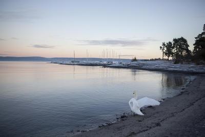 RS3404_Oslofjordmuseet_Lucia2015-48-scr.jpg