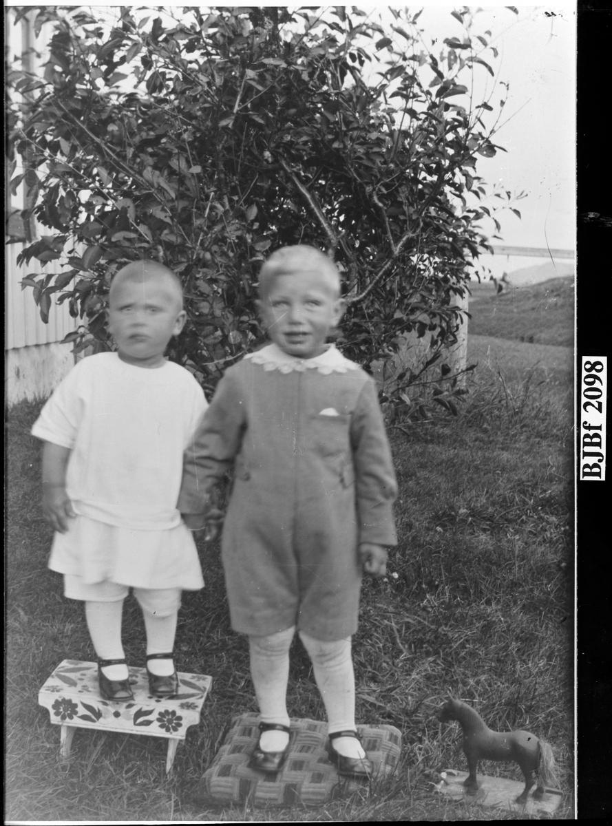 Sønner av Harald Blomsø og Ragnhild Blomsø, Tollefsvika, Oksvoll, Bjugn.