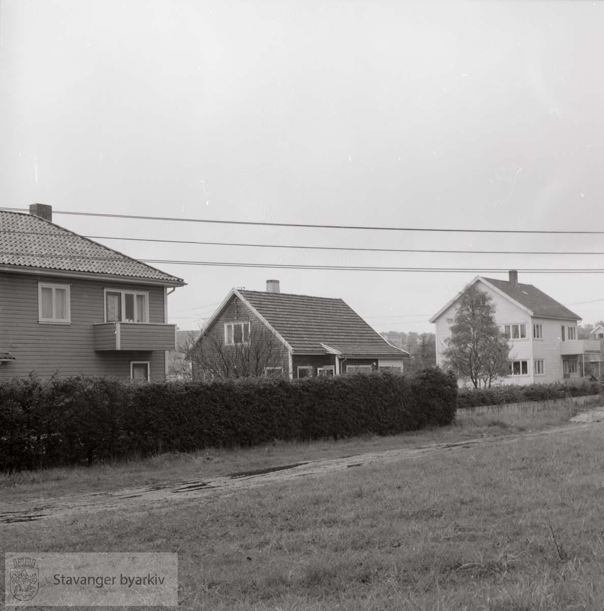 Adolf Tiedemannsvei