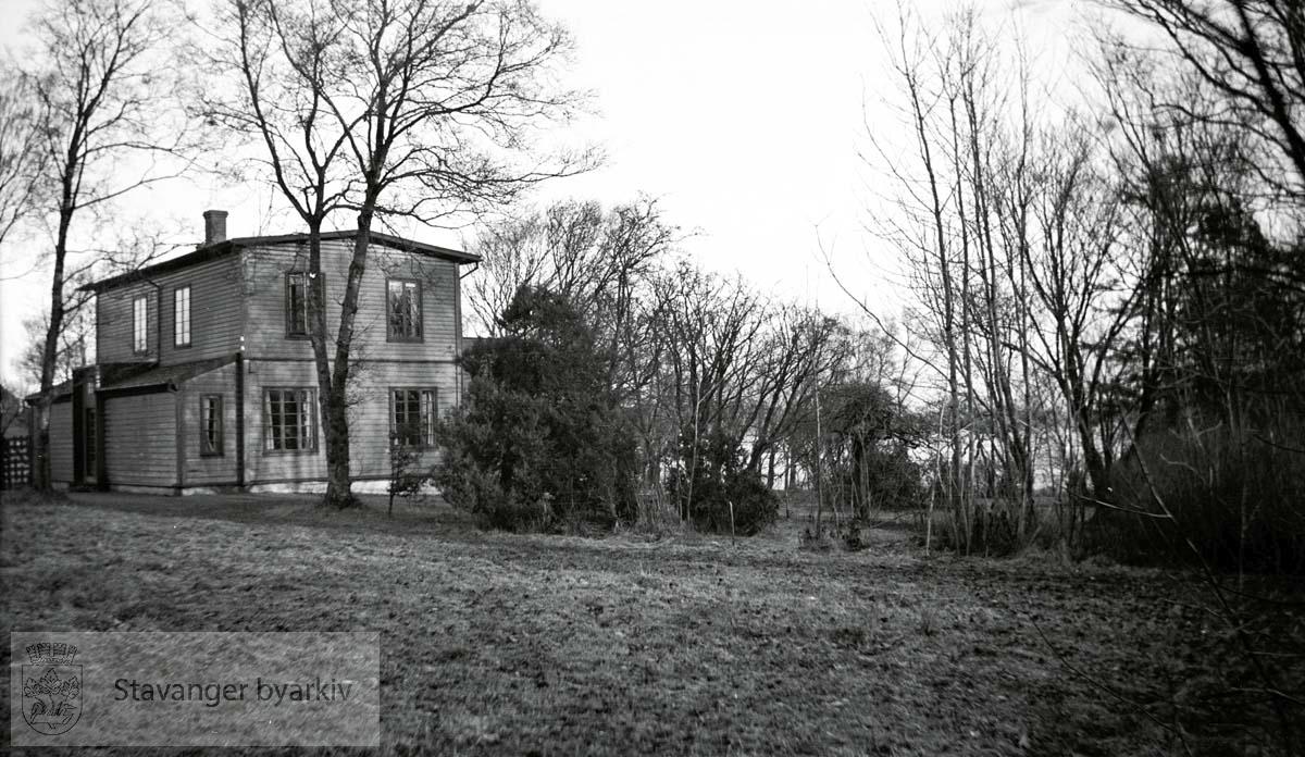 Eiendommen Mostun ligger på vestsiden av Mosvatnet. Boligen, Mostun, var først sommerbolig til redaktør og boktrykker Arnt Moe. Sønnen, Asche Moe, overtok boligen og som gartner plantet han sjeldne trær og busker på eiendommen.