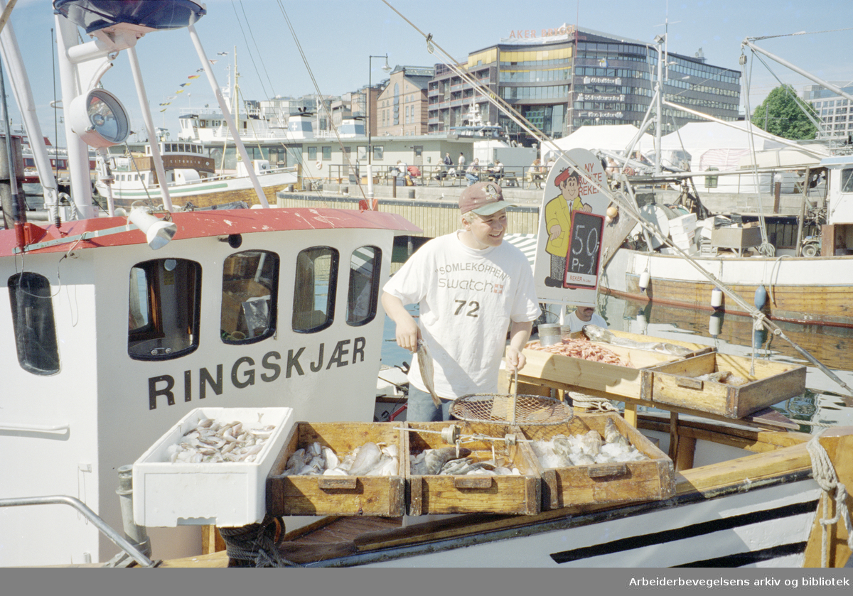 Oslo: Havna. Diverse stemningsbilder. Joakim Gundersen (19 år) har vært fisker i 4 år og stortrives i jobben. 12. juli 1996