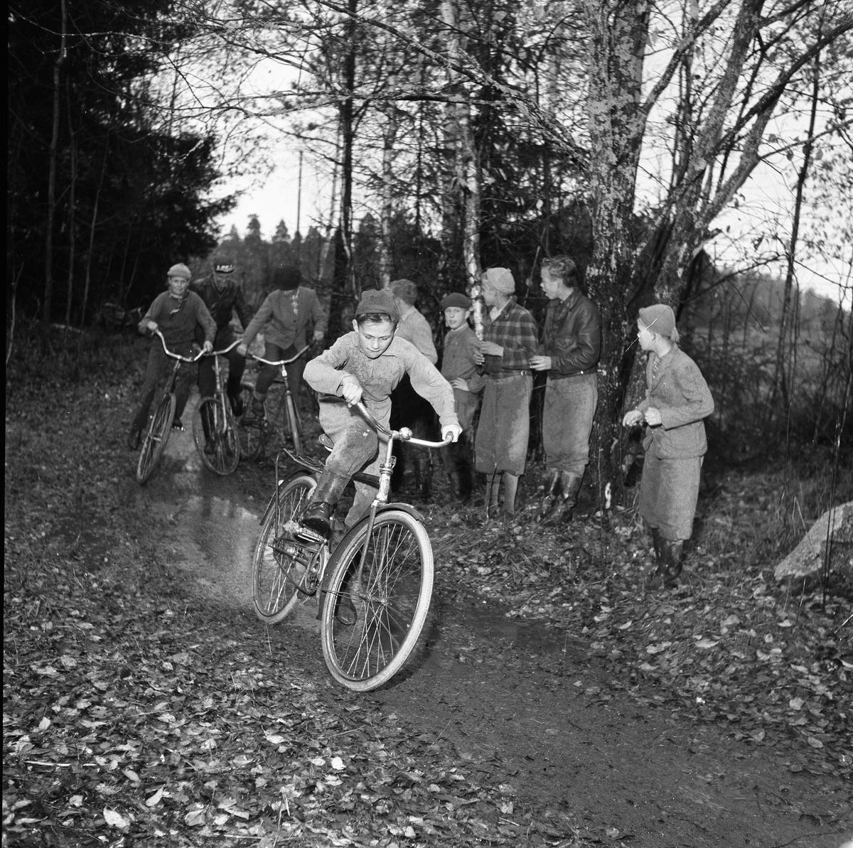 Cykelcross, en ny fluga för ungdomar. Fyra pojkar kommer farande på var sin cykel. Det är svårt att göra omkörning på den smala skogsstigen. Kompisarna står vid sidan och hejar på.