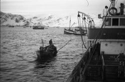 Seks bilder fra et fiskefelt, trolig sildefiske med not. Bil