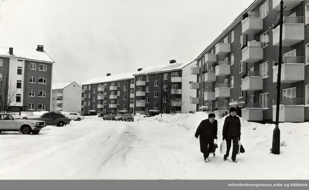 Kalbakken. Februar 1979