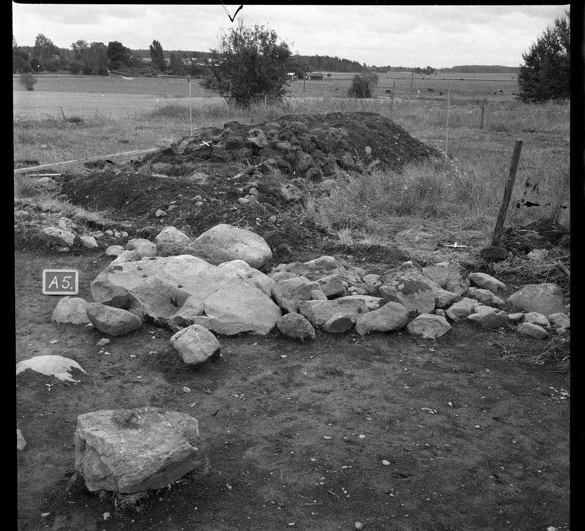 """Munktorp sn, Köping, Åsby. """"Hummelbacken"""". Utgrävning av gravfält RAÄ 117, anläggning 5. 1961."""