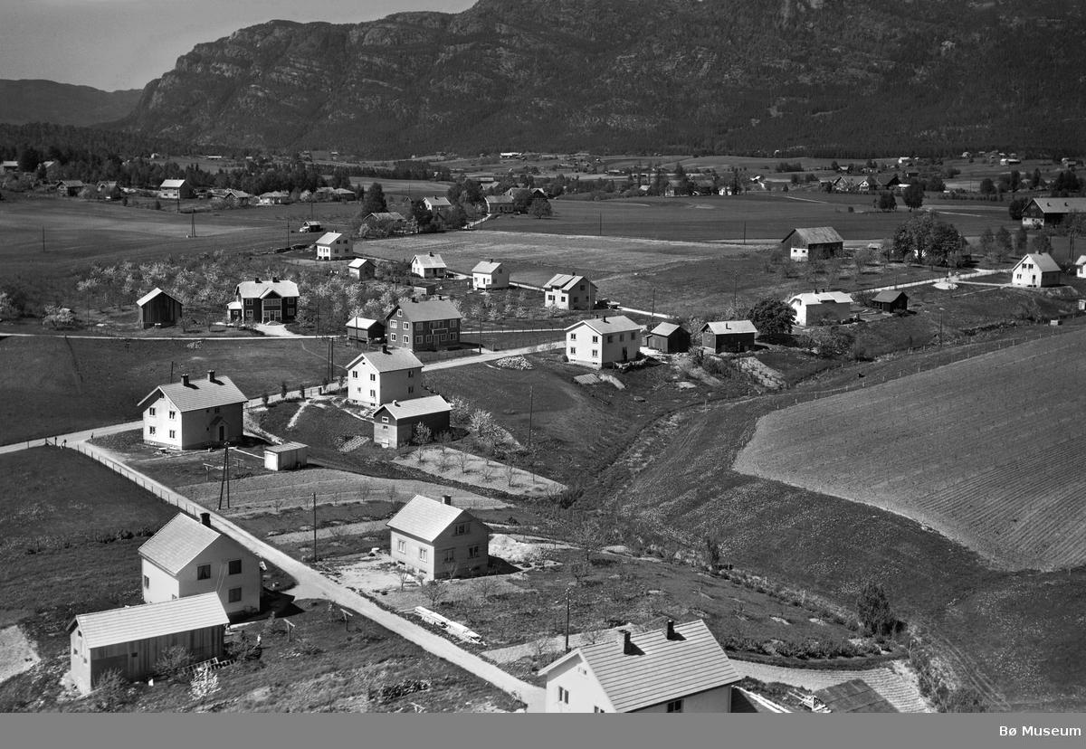Flyfoto frå Ryggvegen på Langkåshaugen i Bø