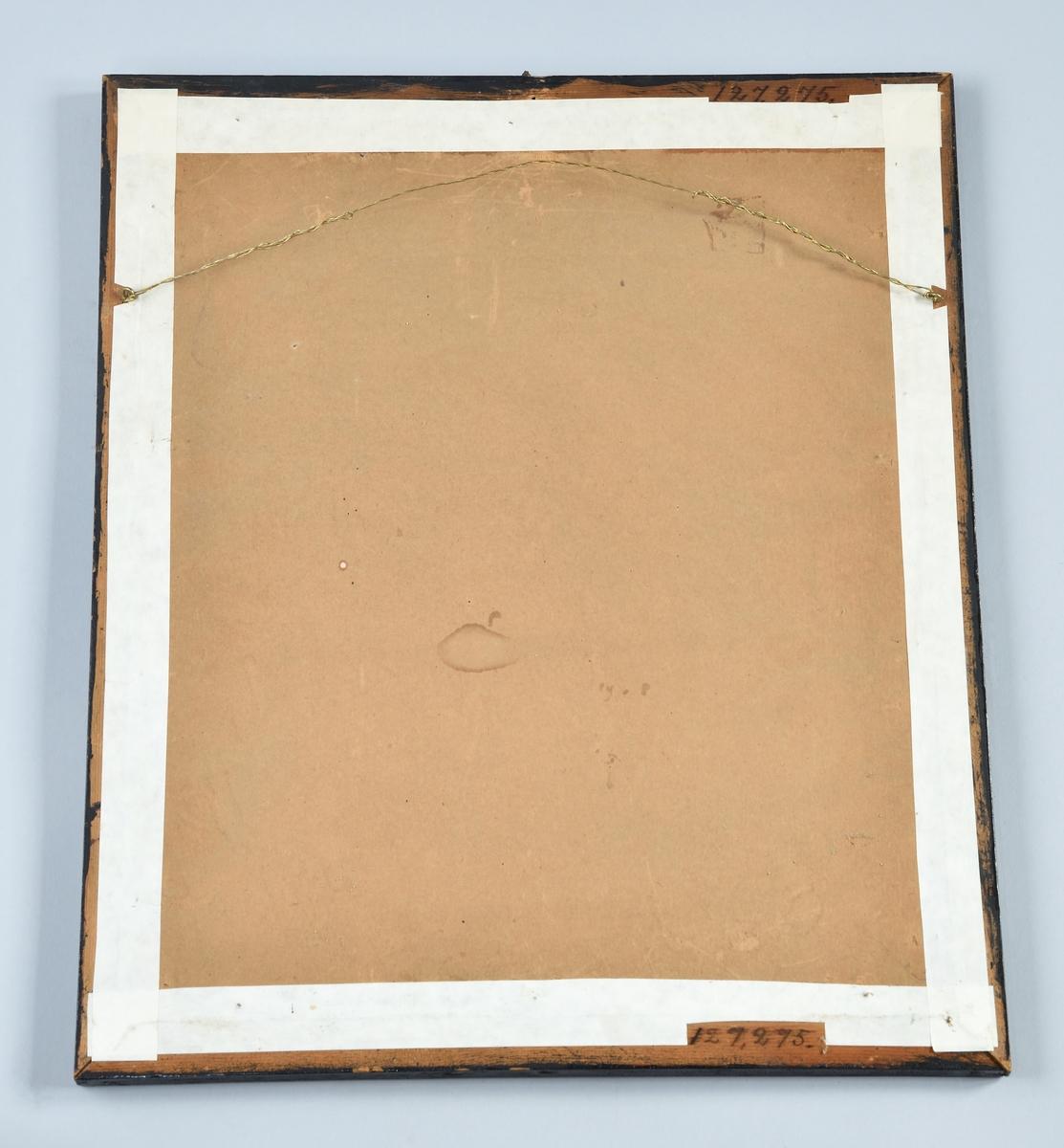 """Tavla, papperstryck, i svartmålad träram och glas. Övre halvan bild föreställande Karl XI:s syn med en mängd människor och avhuggna huvuden, nedre med text och rubriken: """"Konung CARL den Elftes Syn, på Riks-Salen i Stockholm, korrt före Dess död."""""""