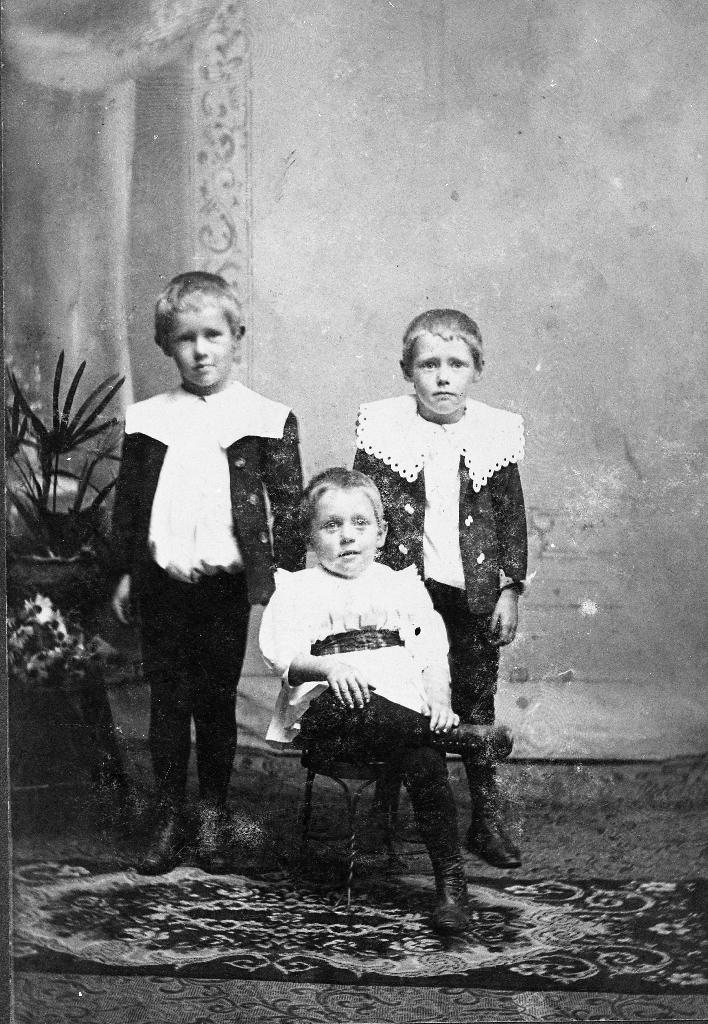 Borna til Ingebret Aasland : Kristoffer, Johannes og Arne.