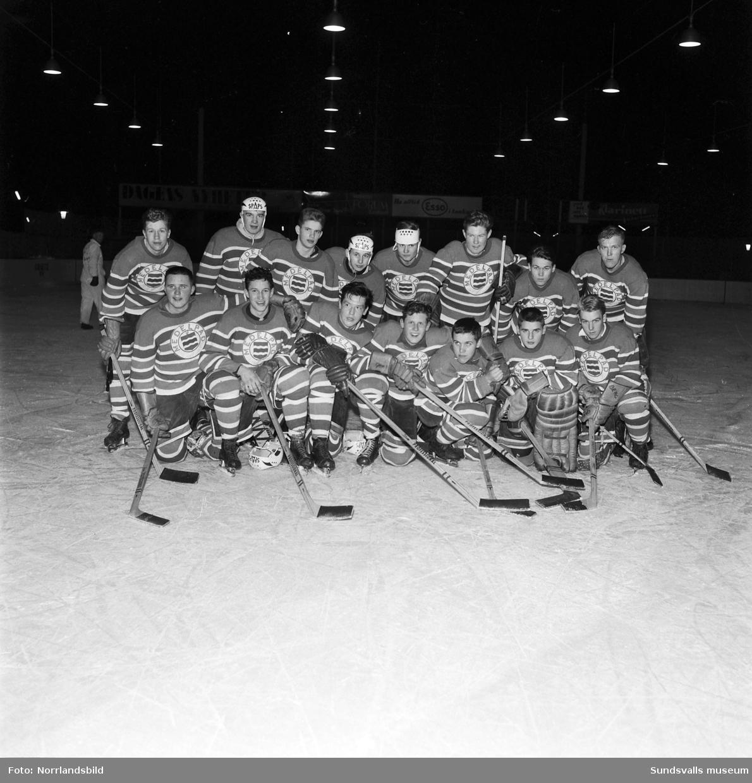 Medelpads ishockeyjuniorer. lagbild i samband med match mot Västerbotten.