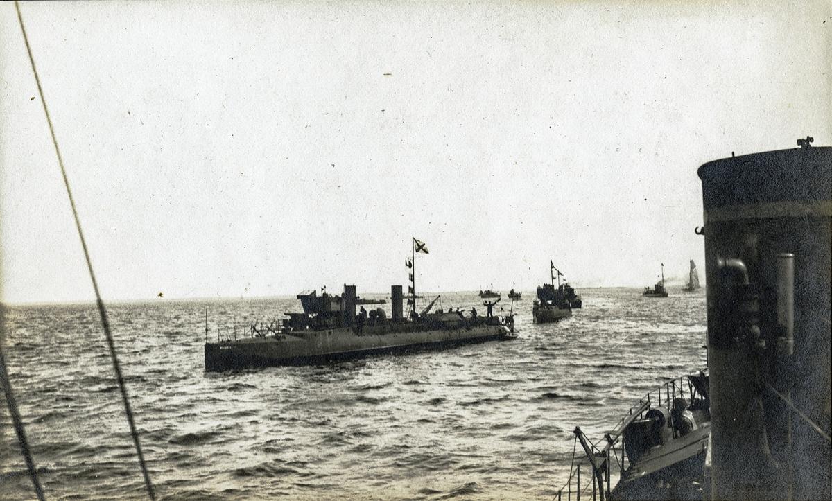 Svenska torpedbåtar, till synes med rysk artighetsflagg.