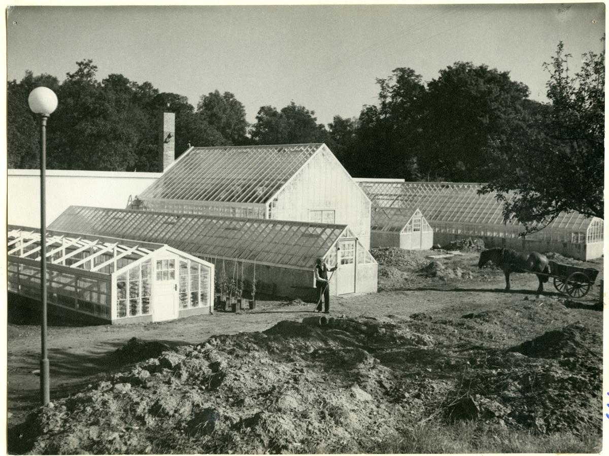 Västerås, Ängsgärdet, Myggbo. Stadsträdgården, 1937.