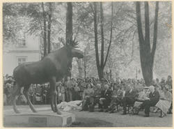 """Innvielse av skulpturen """"Elgen"""" i Kirkeparken."""