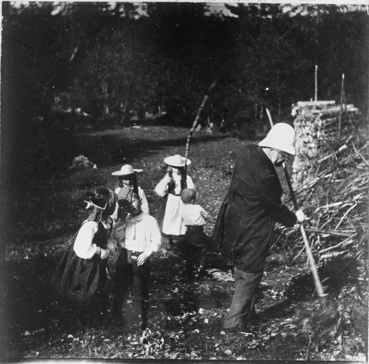 Bjørnson, barnebarn, Aulestad, arbeid, gårdsdrift,