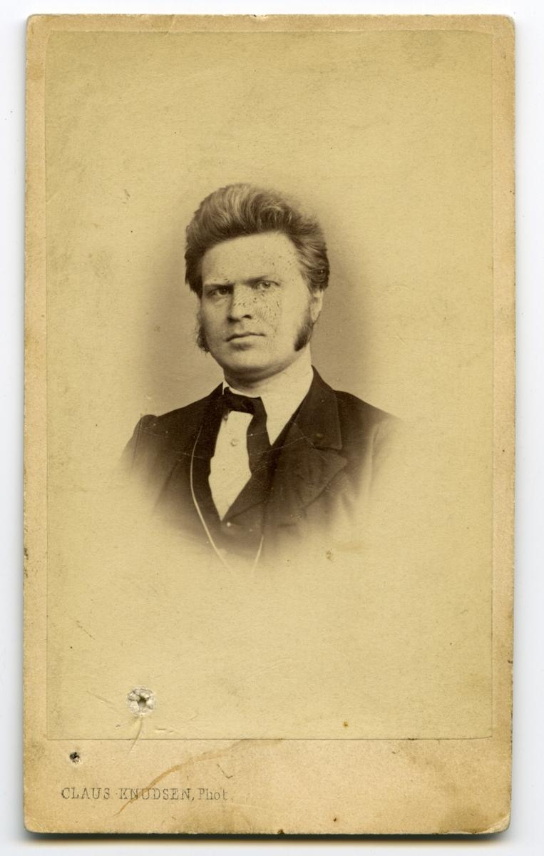 Bjørnson, portrett, 1865