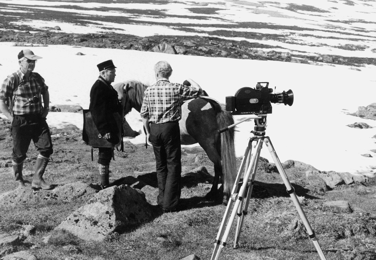 norgesbilder, 3699 Gaustadtoppen, fotografering, hest, menn