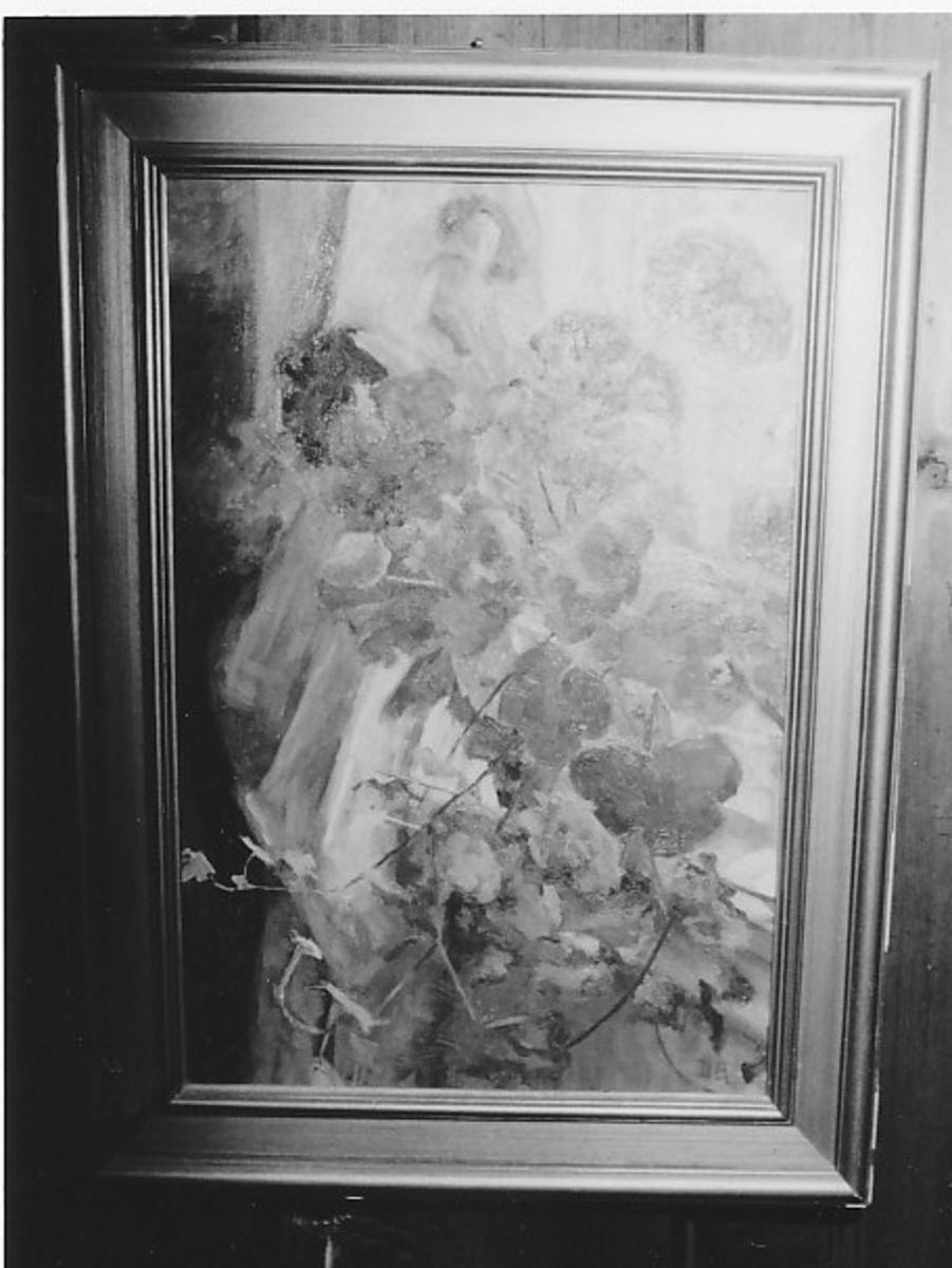 Detalj av vindu med blomstrende pelargonier og eføy.