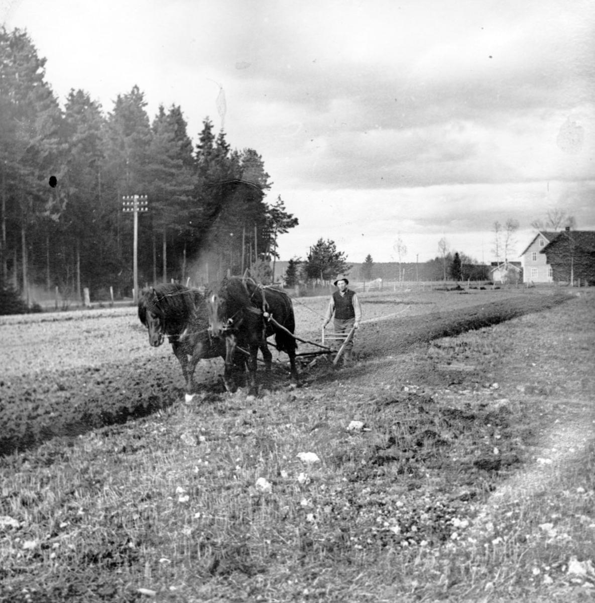 Josef Jahren pløyer.
