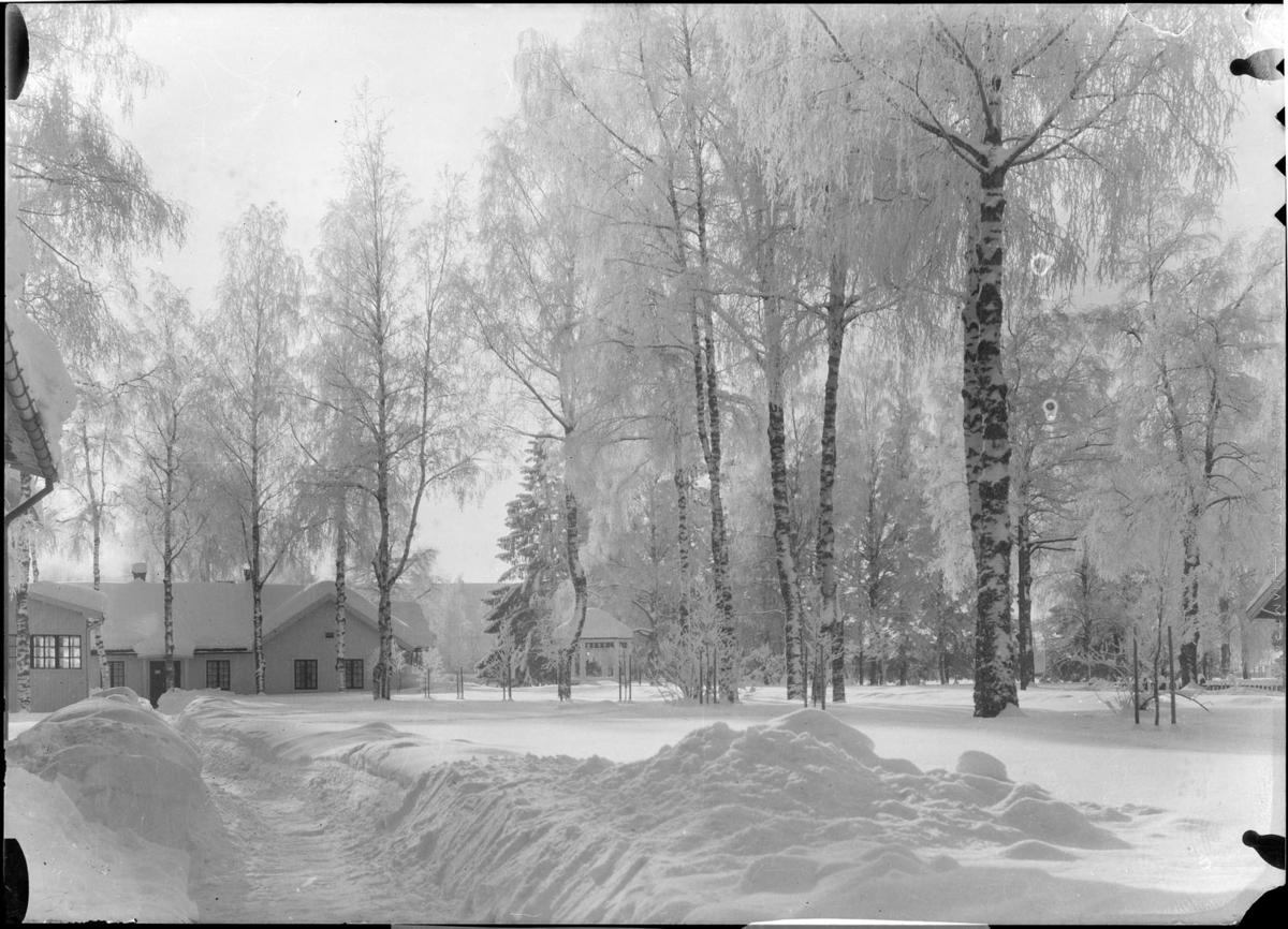 Vintermotiv fra sykehusleiren på Gardermoen.