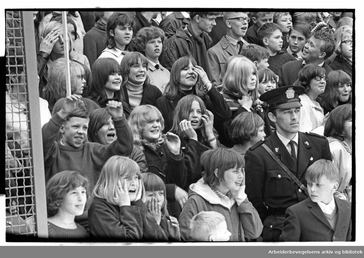 1. mai 1966, The Pussycats underholder på framfylkingens arrangement på Jordal Amfi.
