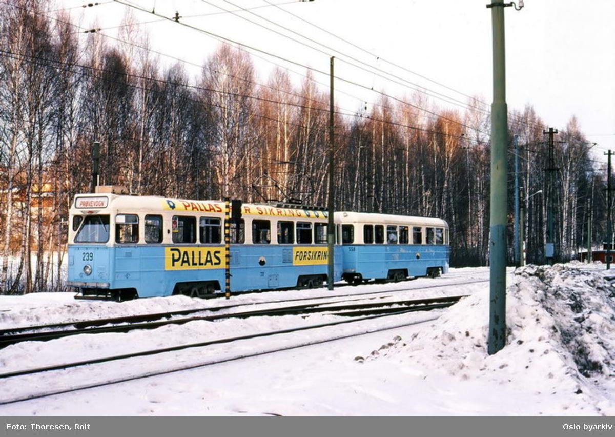 Kolsåsbanen. Trikk motorvogn type Høka MBO nr. 239 og tilhenger type Høka TBO nr. 558 linje 9. Toget er parkert på sidesporet på Jar.