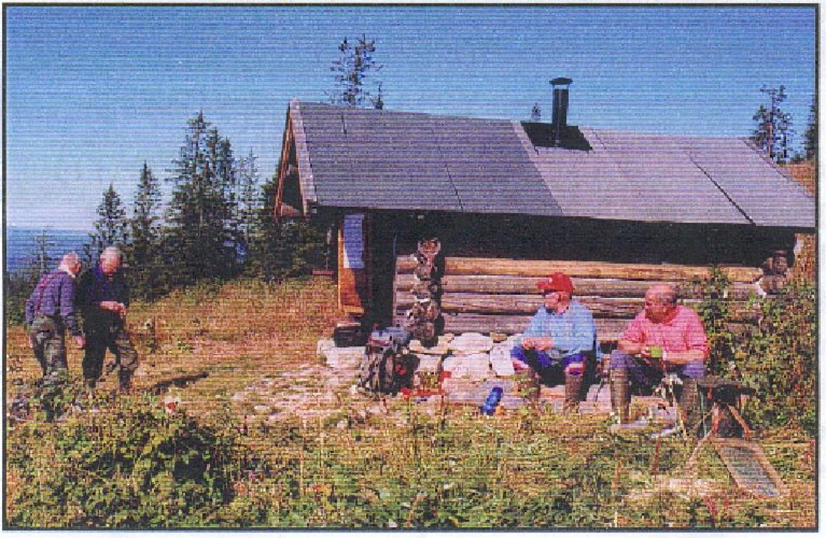 Tømmerbu ved siden av tomta for det opprinnelige revehiet.