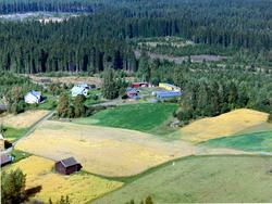 Flyfoto, Herdal gartneri, Løten.