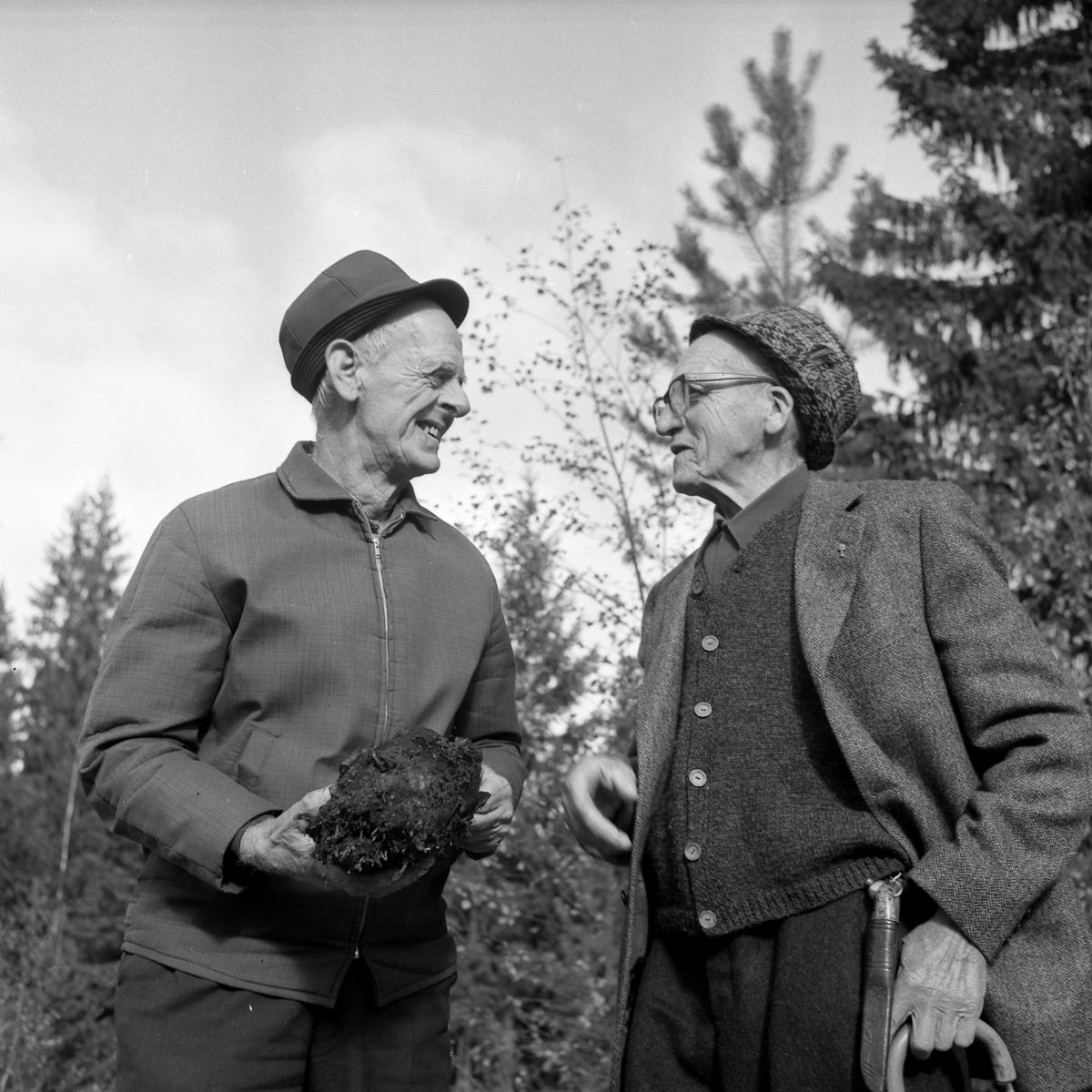 Bjarne Lang-Ree og Steinar Svendsen