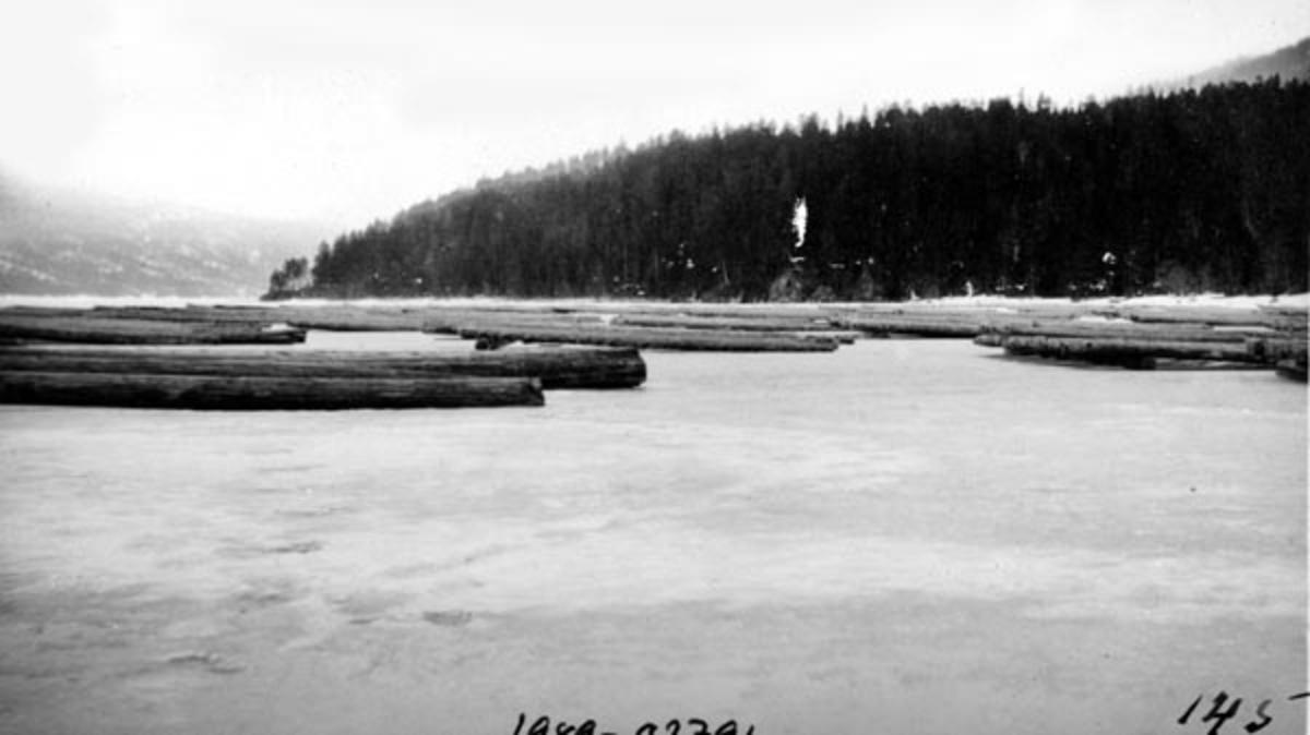 """Fløtingstømmer, levert i flakvelter på isen på Storsjøen i Rendalen vinteren 1928.  Flakveltene besto av barket tømmer som var lagt parallelt i """"floer"""" på tvers av underliggende strøstokker.  Mange foretrakk denne tilleggingsmåten fordi den gjorde tømmeret lett tilgjengelig for måling og merking, og fordi den ofte gav høvelig tørk for tømmeret som lå i floene.  Når underlaget var en isdekt innsjø, som her, kunne man imidlertid risikere at det oppsto kjøving, slik at stokkene etter hvert fraus ned i isen og ble vasstrukne og fuktige i forkant av fløtingssesongen.  Dette vanskeliggjorde i så fall måling og merking, og kunne føre til at en del av tømmeret sank på sin veg nedover vassdraget når fløtinga tok til."""