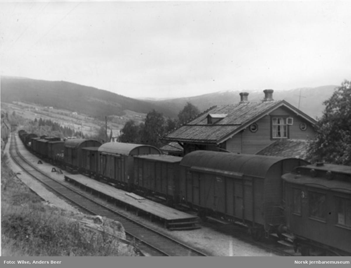 Haltdalen stasjon med et godstog i spor 1