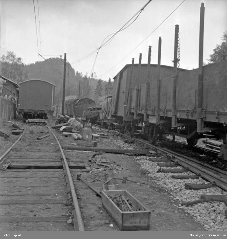 Avsporet godstog på Tangen stasjon