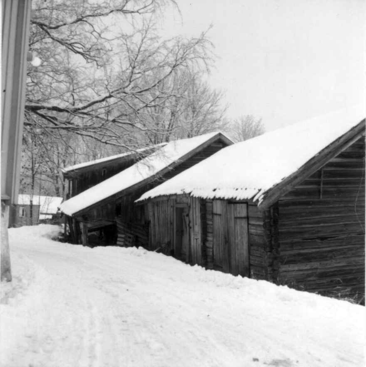 Holo, Bærum, Akershus 1973. Uthus med snø.