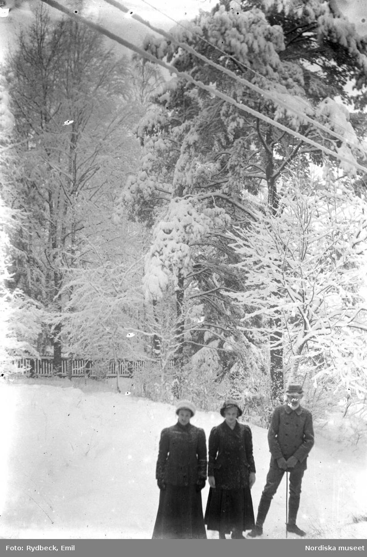 Vinterbild. Snöklädd park med figurer (Sigrid, Arne och Carin) från trappan av Villa Ellinge.